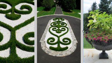 Powerful Patterns in Landscaping