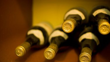 Wine Cellar How to