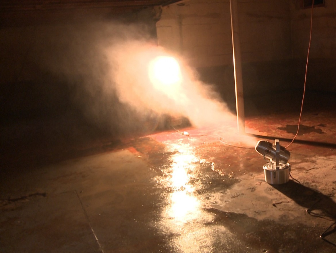 Green Products - Basement Mold Removal
