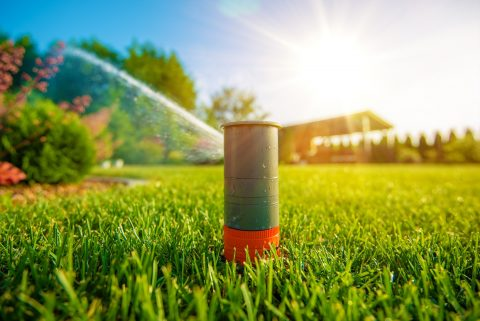Smart-Water For Your Lawn