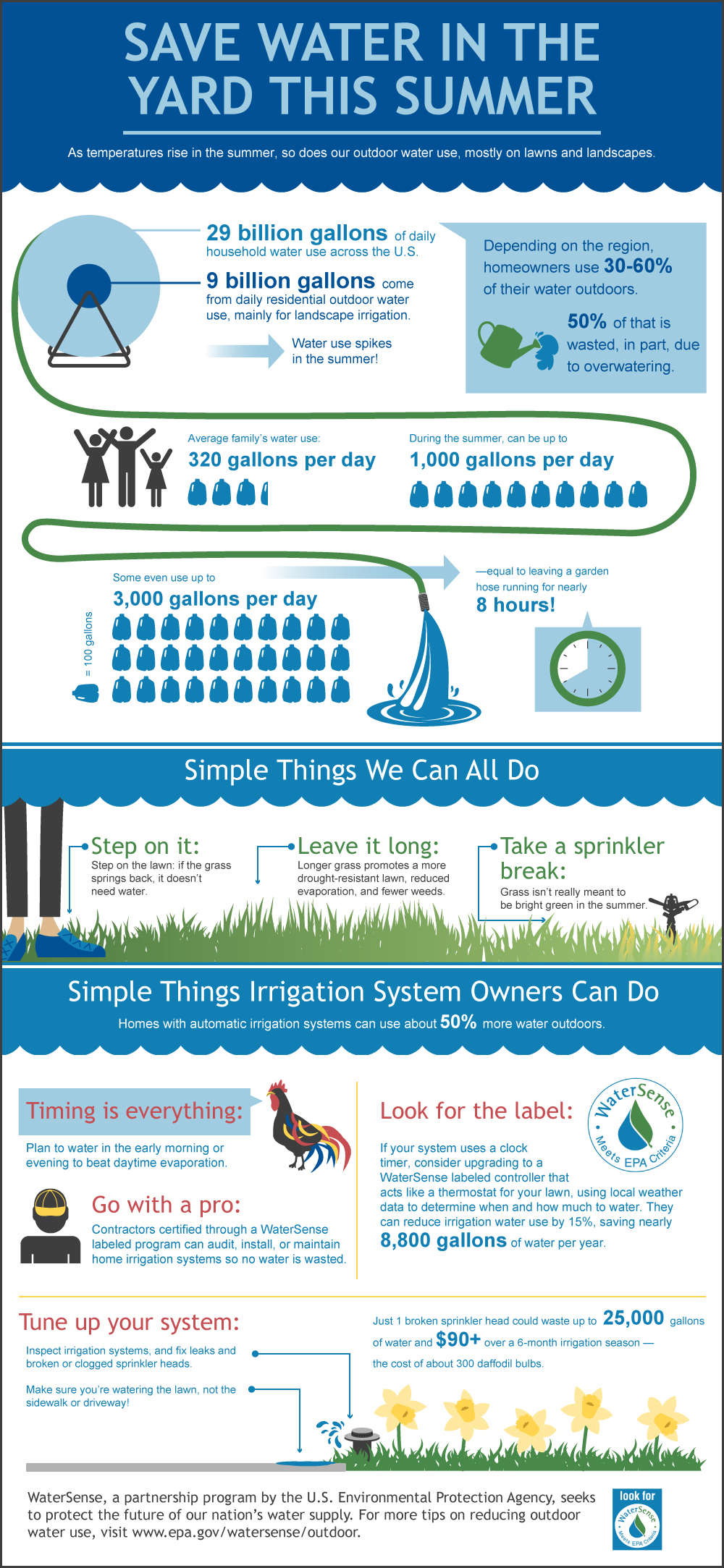 Summer Watering Infographic - Smart-Water