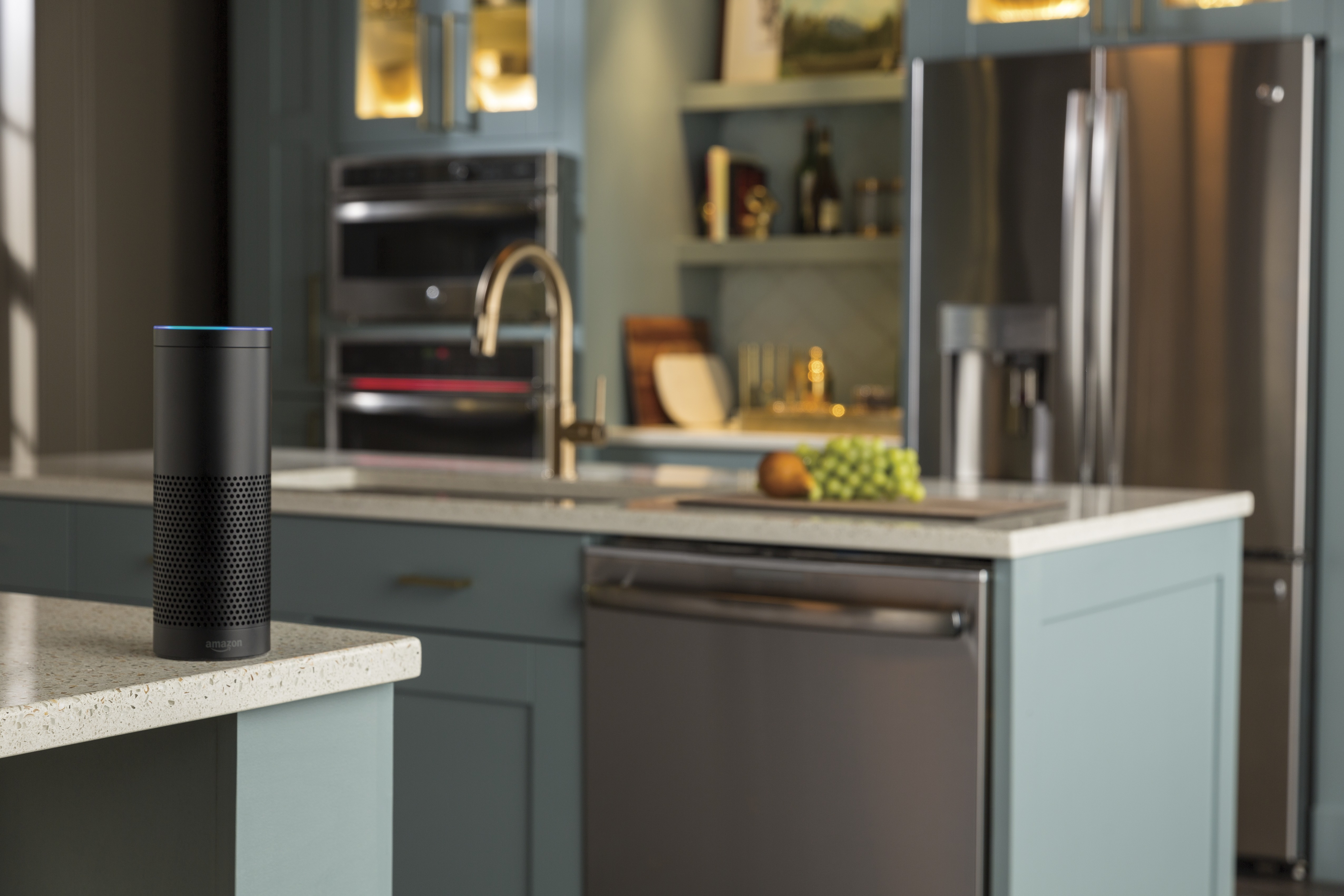 Appliances as a service in the kitchen sabine 39 s new house for High tech kitchen appliances