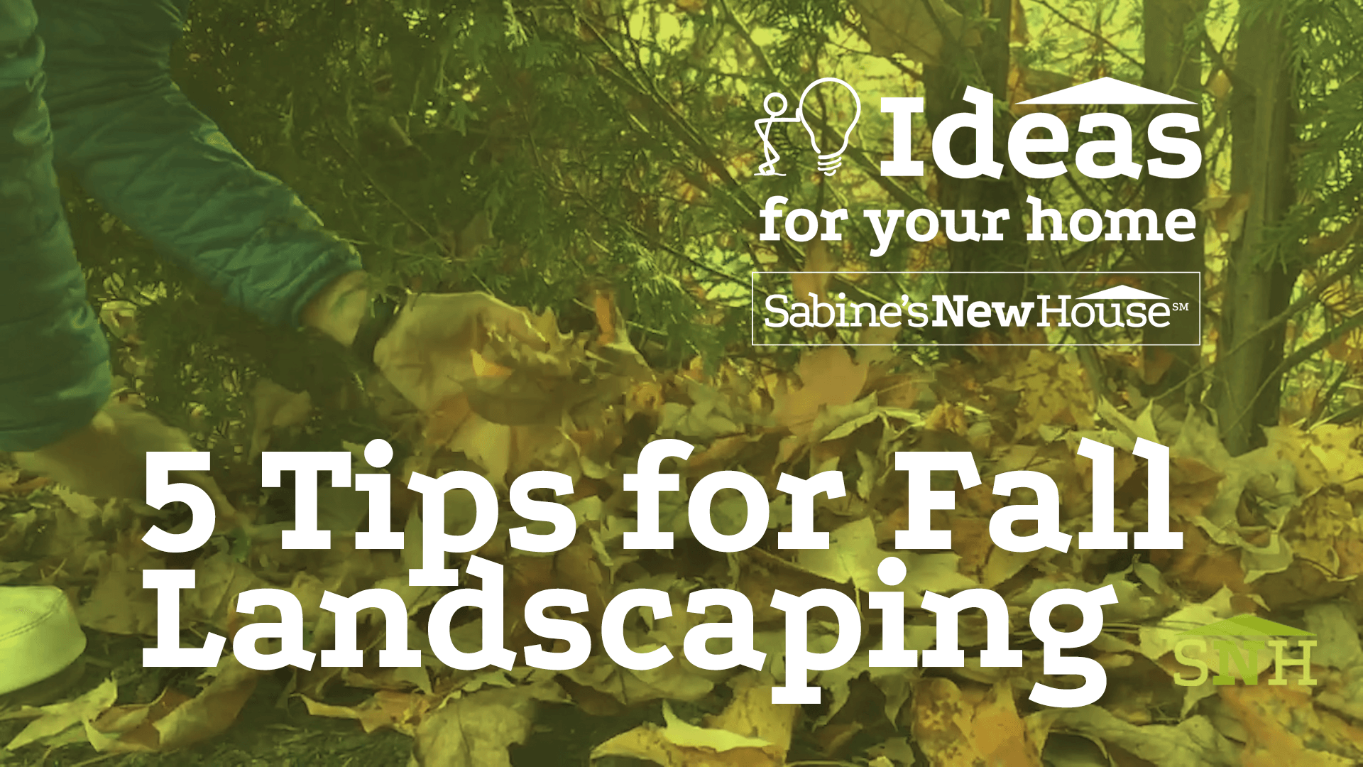 Fall Landscaping Tips five tips for fall landscaping | sabine's new house